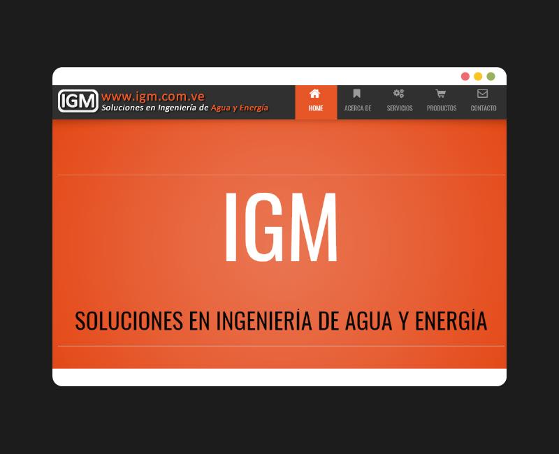 Diseño web IGM